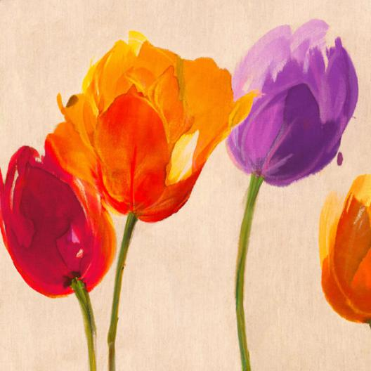 Tulips   Colors (detail)