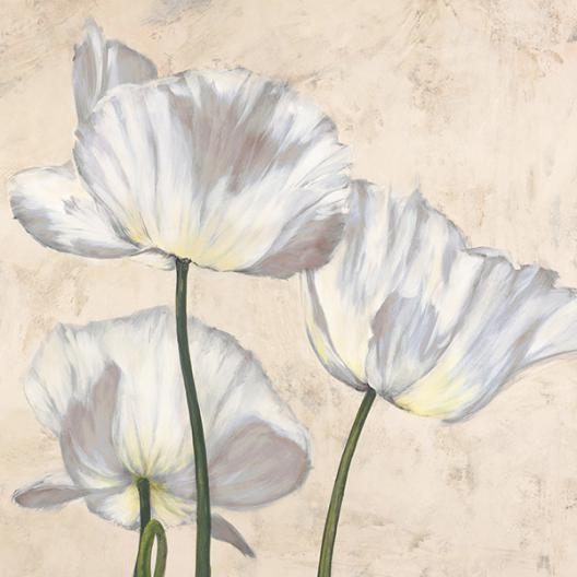 Poppies in White II
