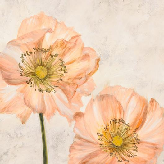 Poppies in Pink I