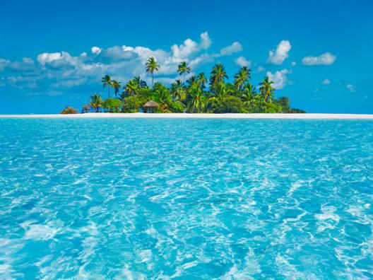 Tropical lagoon with palm island, Maldives
