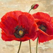 Red Poppies (detail II)