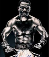 Boxeo - Shane Mosley